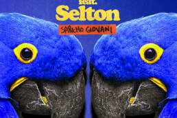 Bianco Feat Selton: